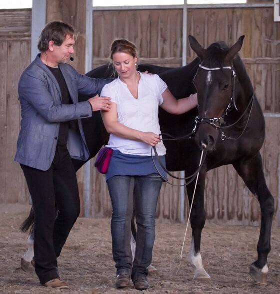 Schau nicht auf dein Pferd – fühle es! Kursbericht Jossy Reynvoet