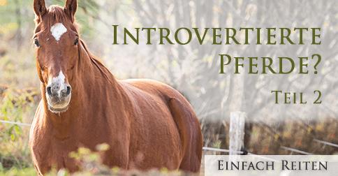 Introvertiert und gar nicht schüchtern?