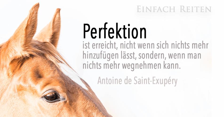 Und? Bist Du schon perfekt?