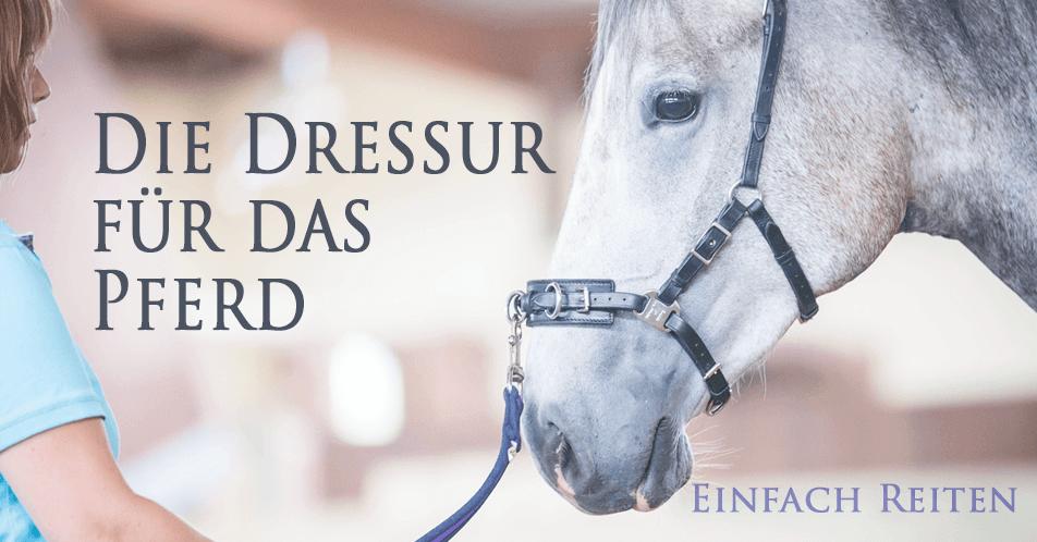 Die Dressur für das Pferd